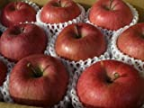 長野県産りんご 「サンふじ」 特秀品3kg 8~10玉前後入り