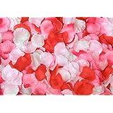 Aharan9(アハランナイン) フラワーシャワー 3,000枚 4色【レッド?ピンク?ローズピンク?ホワイト】パーティー?結婚式?飾り付け