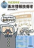 キタミ式イラストIT塾 基本情報技術者 平成30年度 (情報処理技術者試験)