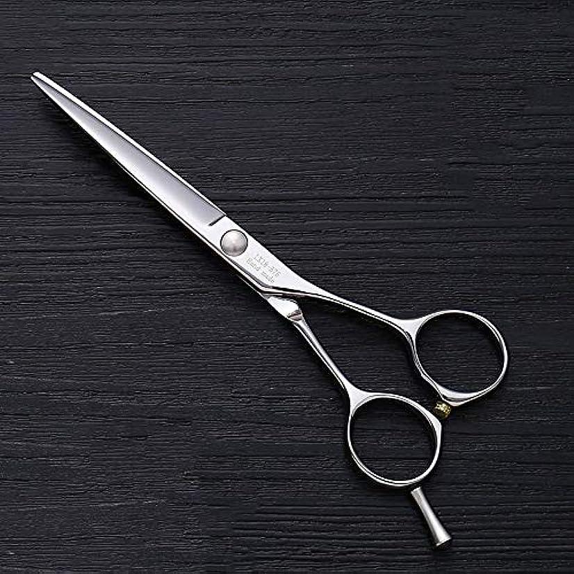 工業化する埋め込むより多い理髪用はさみ 5.5インチ理髪はさみ、ヘアスタイリスト特別な単語カット平せん断ヘアカットはさみステンレス理髪はさみ (色 : Silver)