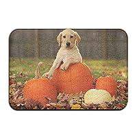 秋のカボチャ犬玄関滑り止めハウスガーデンゲートカーペットドアマットフロアパッド