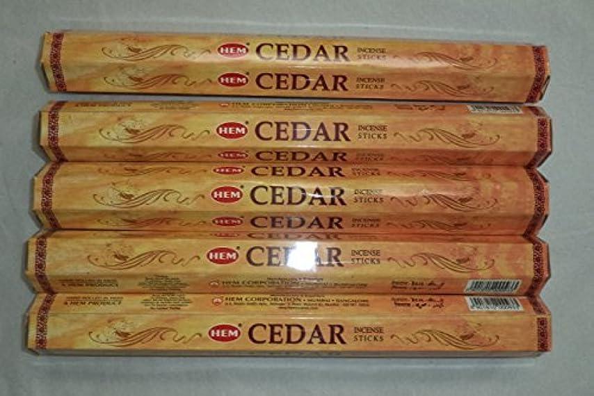 偶然の人に関する限り寛解Hem Cedar 100 Incense Sticks (5 x 20 stick packs) [並行輸入品]