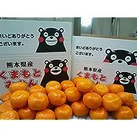 みかん 訳あり 箱込10キロ(9kg+保証分500g)ご家庭用 熊本産 産地直送 フルーツ 果物【フルーツ甘味屋GGY】