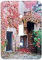 3drose LSP 206116_ 1イタリア、トスカーナ、VolpaiaレッドアイビーCovering the壁の建物Single切り替えスイッチ