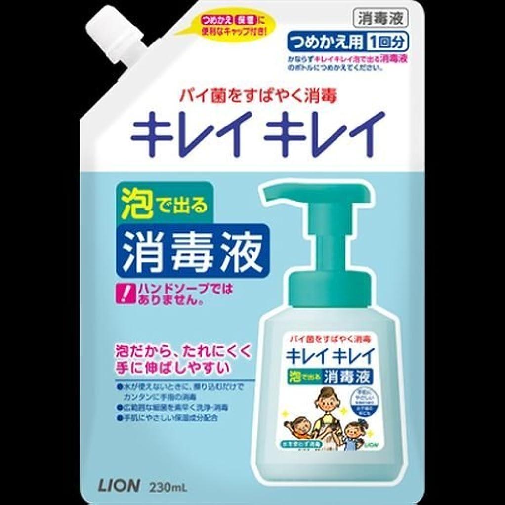 蛾ナイロン早くキレイキレイ 薬用泡ででる消毒液 つめかえ用 230mL ×2セット