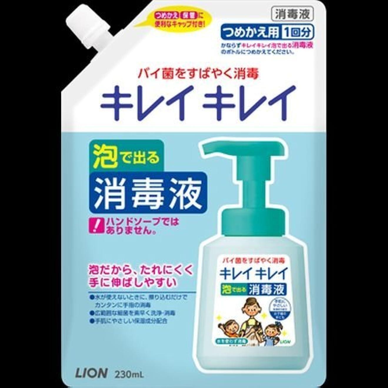 仮称割れ目学期キレイキレイ 薬用泡ででる消毒液 つめかえ用 230mL ×2セット