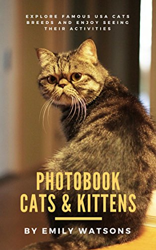 Photobook Cats: Cats Image of Persian, Siamese, Maine Coon, Ragdoll, Manx of Cute, Funny, Drowsy and Running (English Edition)