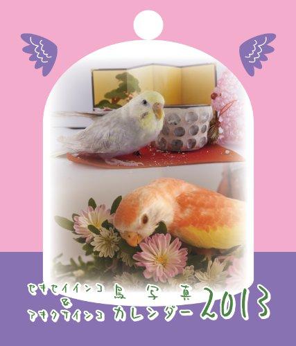 セキセイインコ&アキクサインコ 鳥写真カレンダー2013