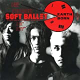 EARTH BORN (完全生産限定盤) (アナログ盤) (特典なし) [Analog]