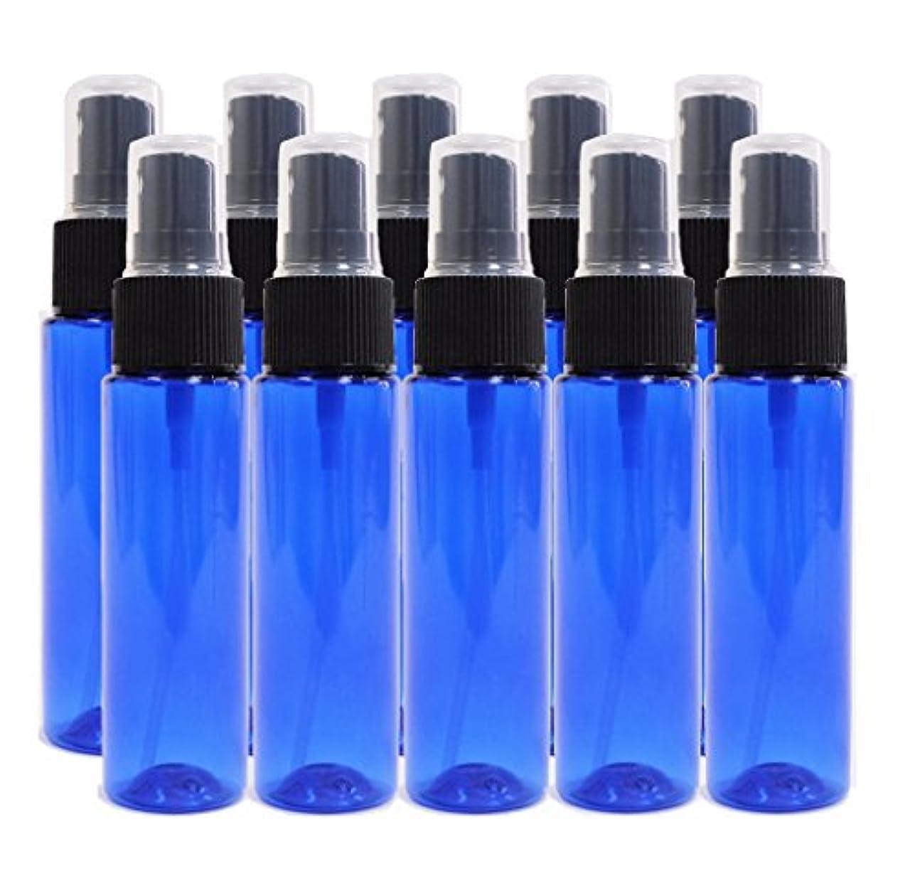 無視再び心理学ease 保存容器 スプレータイプ プラスチック 青色 30ml×10本