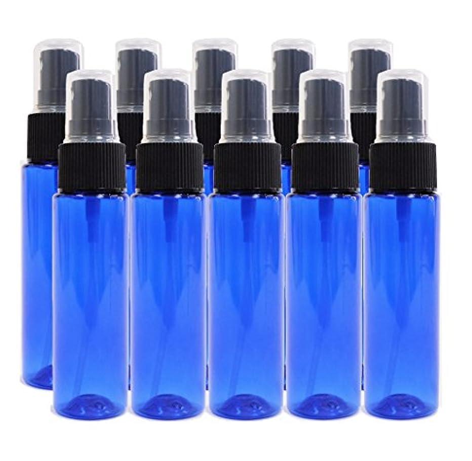 凝視収容する酸度ease 保存容器 スプレータイプ プラスチック 青色 30ml×10本