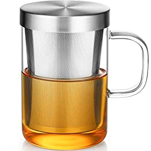 (Glass+Stainless Steel) - Ecooe Borosilicate Glass Tea Cup with Stainless Steel Infuser & Lid, 500mL (Full Capacity)