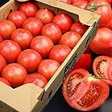 トマト 桃太郎トマト 1ケース 約4kg とまと(gc)