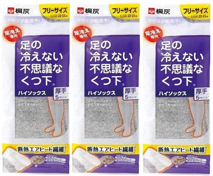 オーバーフロー極めて悪名高い【まとめ買い】桐灰化学 足の冷えない不思議なくつ下 ハイソックス 厚手 足冷え専用 フリーサイズ グレー 1足分(2個入) ×3個セット