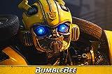 Bumblebee 画像