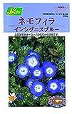 カネコ種苗 草花タネ258 ネモフィラ インシグニスブルー 10袋セット