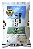 【精米】新潟県産 白米 雪蔵仕込みこしいぶき 5kg 平成29年産
