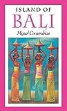 Island of Bali 画像