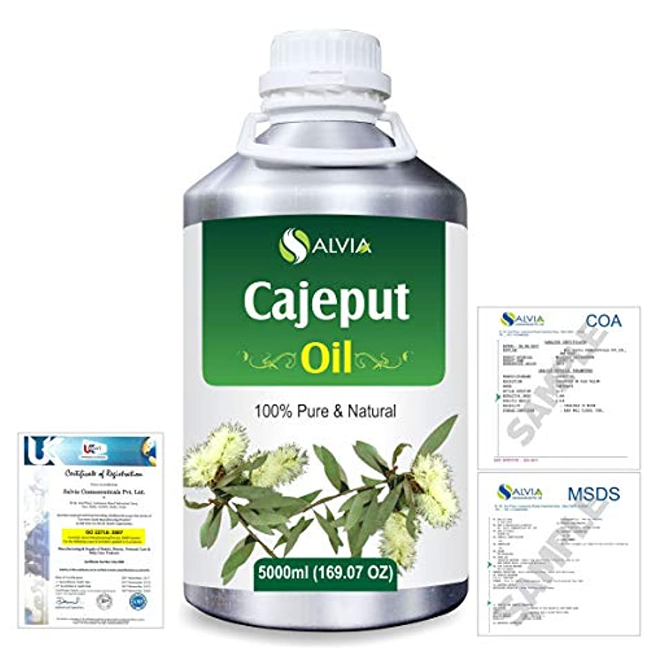 背景ヒロインケイ素Cajeput (Melaleuca leucadendron) 100% Natural Pure Essential Oil 5000ml/169fl.oz.
