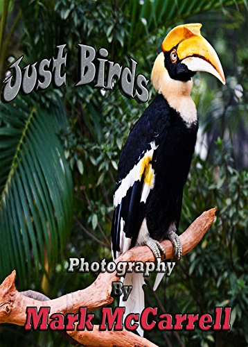 Just Birds: Photography by Mark McCarrell (English Edition)