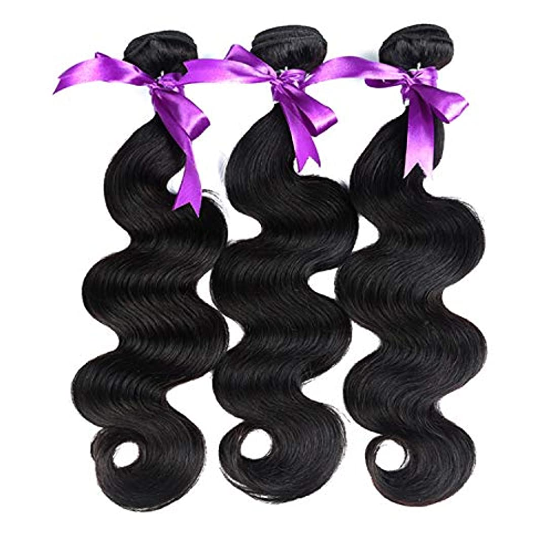 喜んでセットアップ女性ブラジルの体毛バンドル8-28インチ100%人間の髪織りレミー髪ナチュラルカラー3ピース体毛バンドル かつら (Stretched Length : 10 10 10)