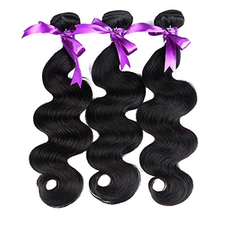 針分類する展開する髪ペルー実体波髪3ピース人間の髪バンドル非レミー髪の拡張子8-28インチ (Length : 18 20 22)
