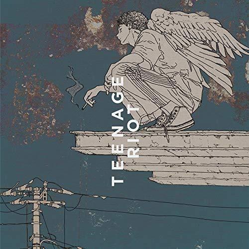 Flamingo / TEENAGE RIOT(ティーンエイジ盤 初回限定)