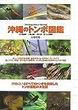 沖縄のトンボ図鑑