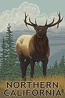 北カリフォルニア–Elkシーン 24 x 36 Giclee Print LANT-54967-24x36