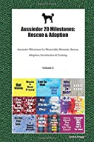 Aussiedor 20 Milestones: Rescue & Adoption: Aussiedor Milestones for Memorable Moments, Rescue, Adoption, Socialization & Training Volume 1