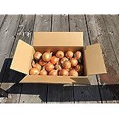 たまねぎ 1箱5kgSサイズ 淡路島 農家直送