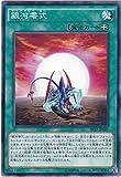 遊戯王 銀河零式 AT15-JP007 アドバンスド・トーナメントパック2016 Vol.3