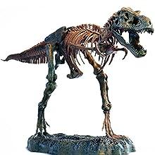 Edu-Toys T-Rex スケルトン 巨大レプリカ 36インチスケール(約91.5cm) ティラノサウルス 骨格 化石 (T-Rex)