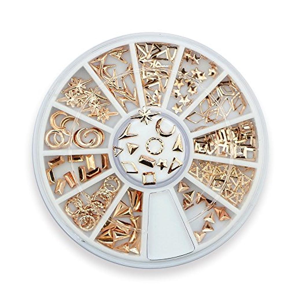 こっそり統合する軽くTakarafune ネイルアート ネイル パーツ ローズゴールド メタルスタッズ セットビジュー ジェルネイル 3Dネイルデコレーション 12種類