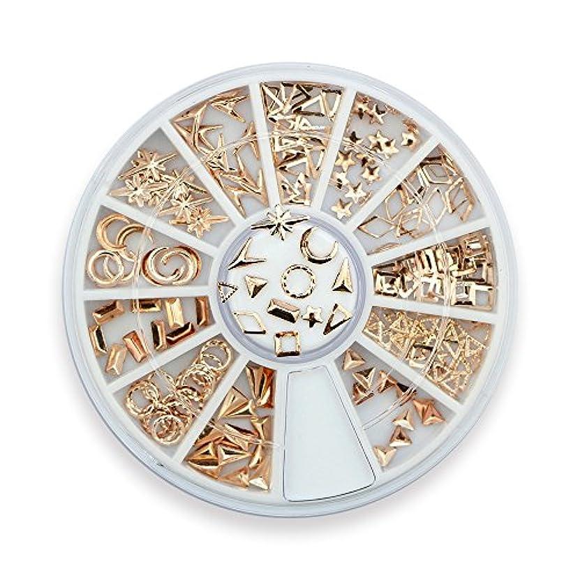 宴会避難皮肉Takarafune ネイルアート ネイル パーツ ローズゴールド メタルスタッズ セットビジュー ジェルネイル 3Dネイルデコレーション 12種類