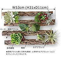 a-wood・ベース透明アクリル・サイズ 53x31x奥行き11cm