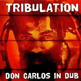 Tribulation in Dub [12 inch Analog]