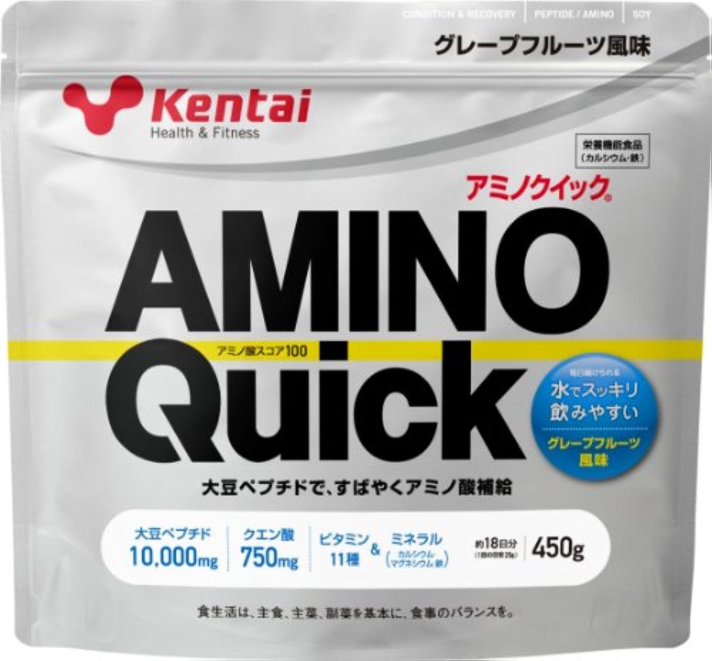 軽蔑ベッドを作るおとこKentai アミノクイック グレープフルーツ 450g