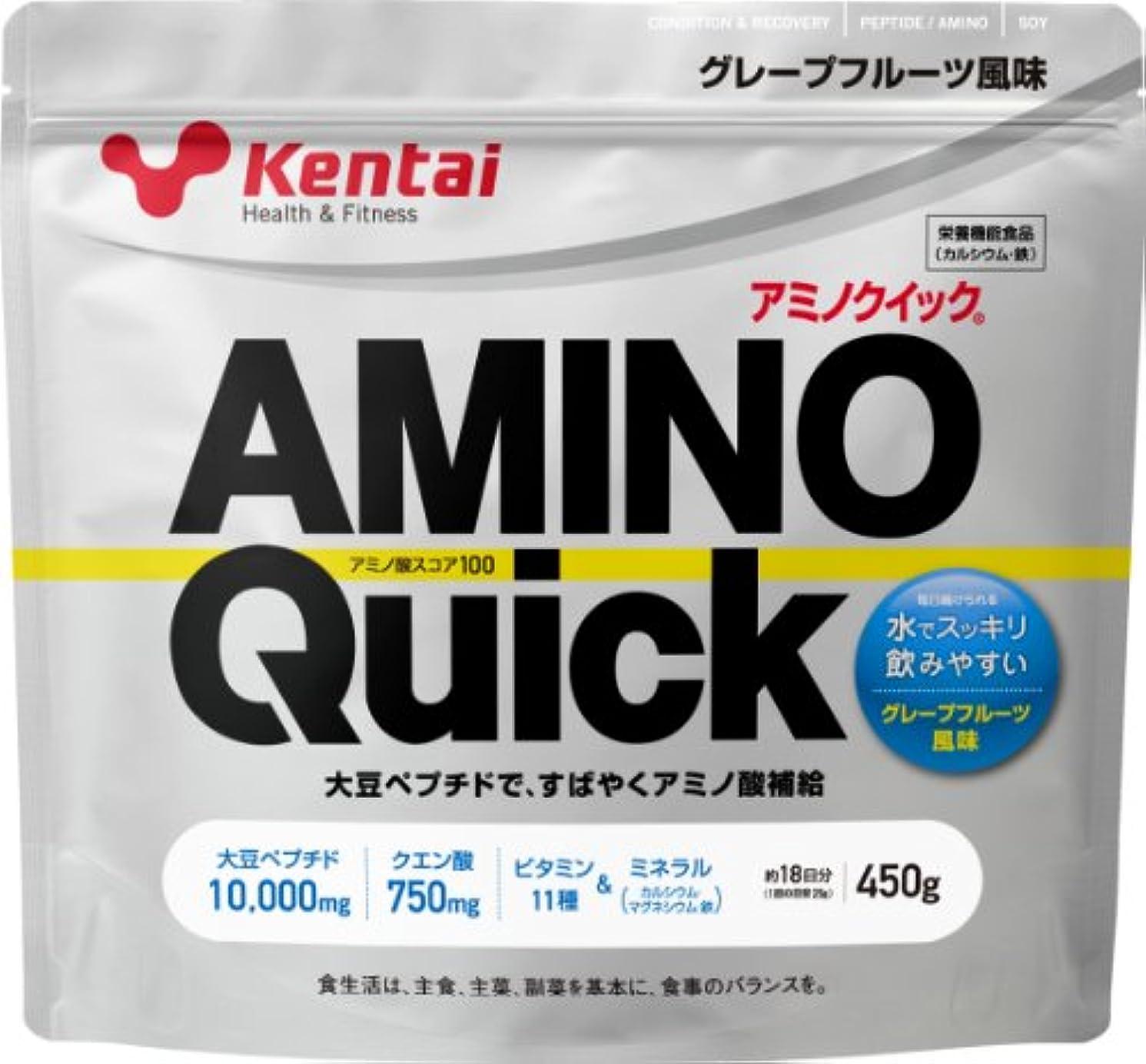 脱臼する窓を洗う送信するKentai アミノクイック グレープフルーツ 450g