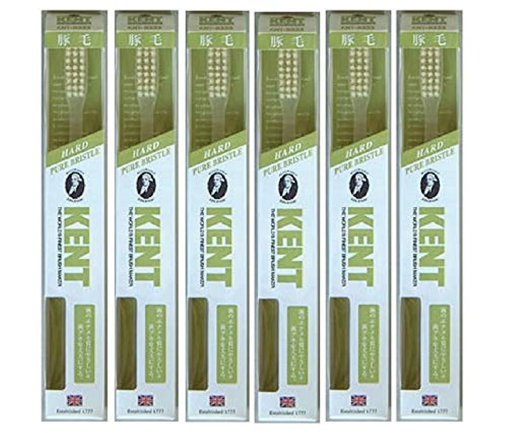 欲しいです統計的移行する【6本セット】KENT 豚毛歯ブラシ KNT-9333 ラージヘッド かため