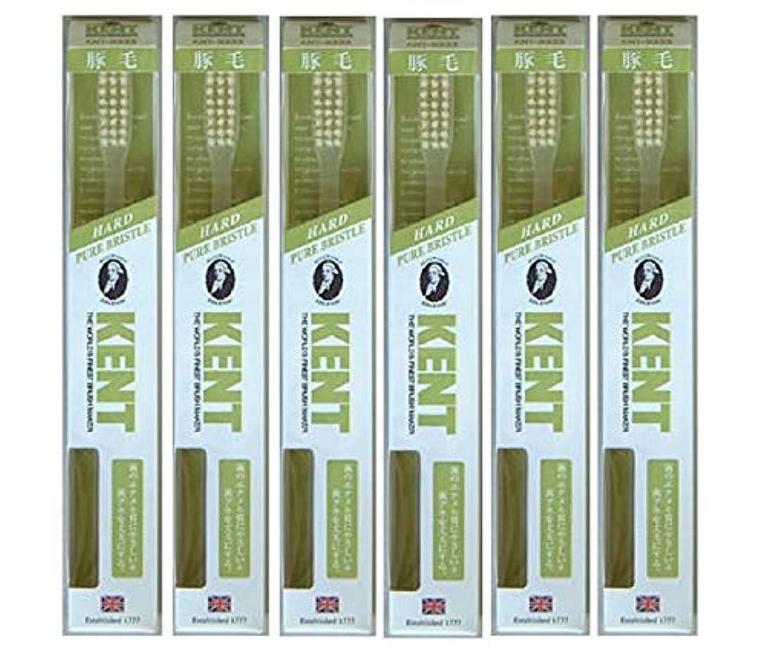 後継充電フライト【6本セット】KENT 豚毛歯ブラシ KNT-9333 ラージヘッド かため