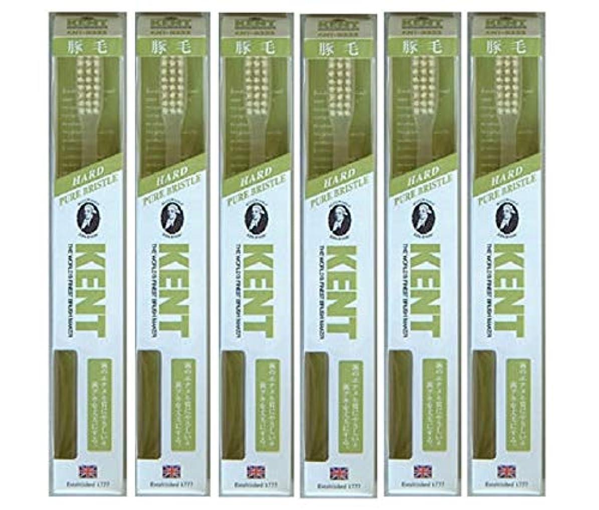 魅了するテナント入学する【6本セット】KENT 豚毛歯ブラシ KNT-9333 ラージヘッド かため