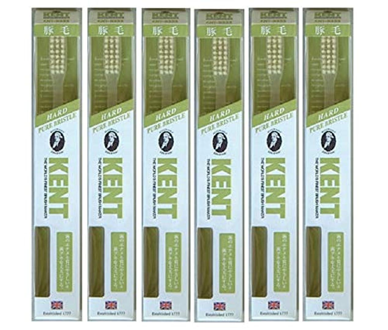 無線パーククマノミ【6本セット】KENT 豚毛歯ブラシ KNT-9333 ラージヘッド かため