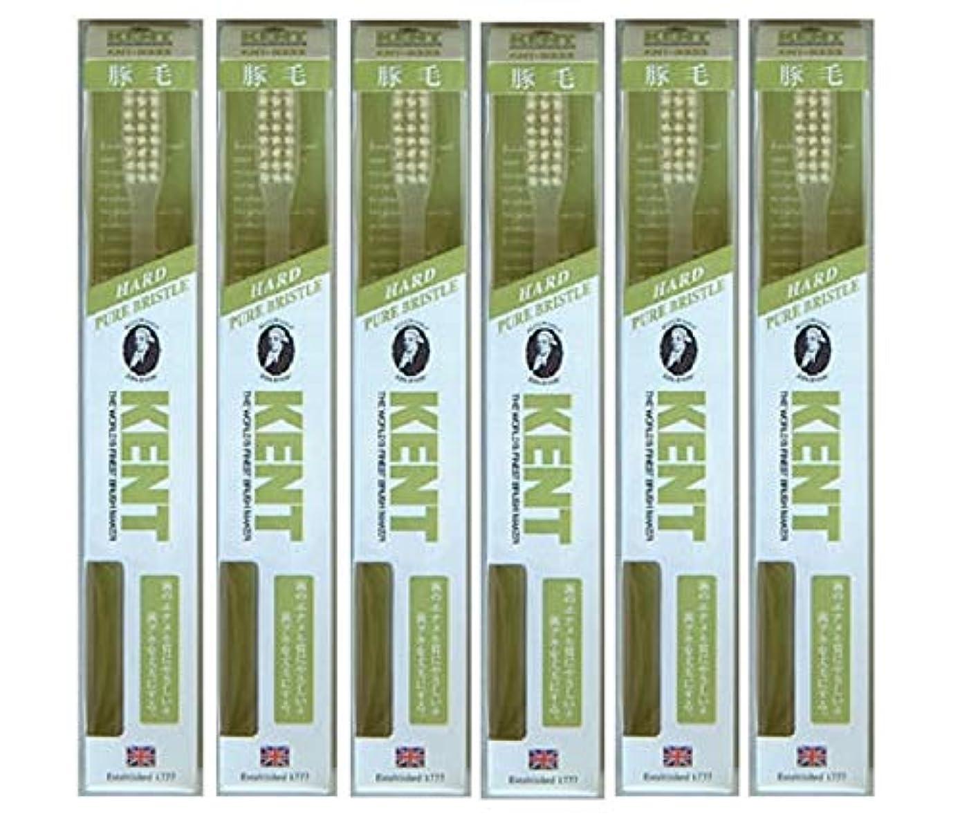 バイオレット消費者いつでも【6本セット】KENT 豚毛歯ブラシ KNT-9333 ラージヘッド かため
