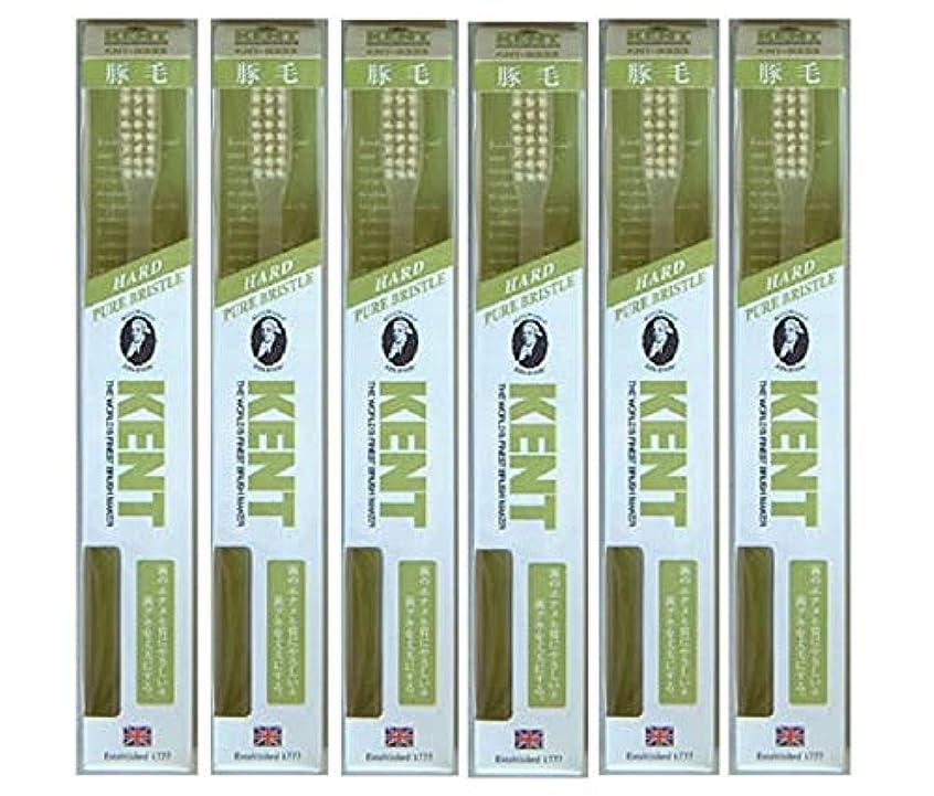 第強盗敵対的【6本セット】KENT 豚毛歯ブラシ KNT-9333 ラージヘッド かため