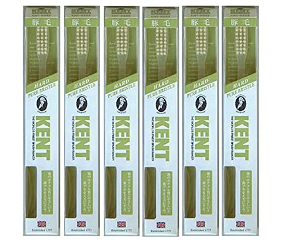 時制のコンソール【6本セット】KENT 豚毛歯ブラシ KNT-9333 ラージヘッド かため