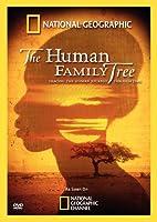 Human Family Tree [DVD] [Import]