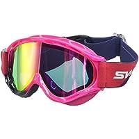 SWANS(スワンズ) ゴーグル スキー スノーボード 曇り止めミラーダブルレンズ TK-NEO-MDH