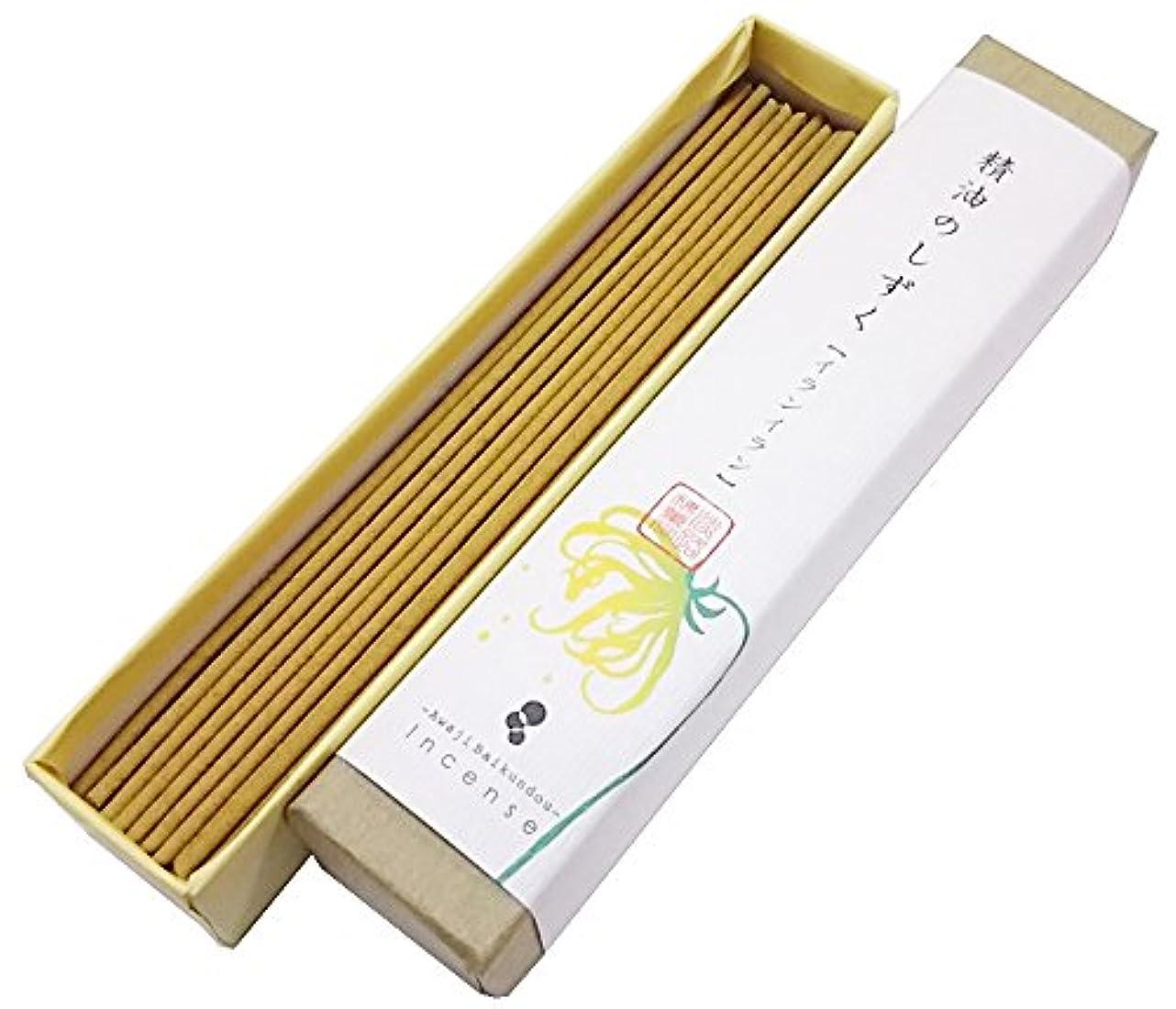 コンテンポラリー電圧悪性淡路梅薫堂のお香 精油のしずく イランイラン (9g)