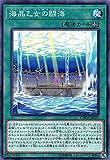 遊戯王 CHIM-JP053 海晶乙女の闘海 (日本語版 ノーマル) カオス・インパクト